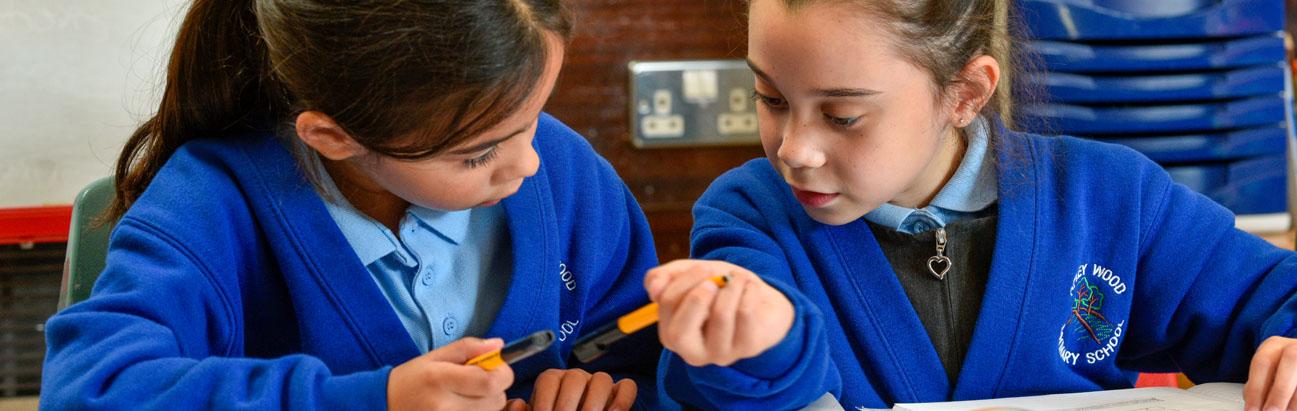 Apley Wood Primary School